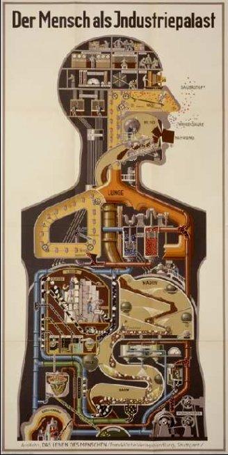 mechanical-anatomy